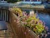 Cesky Krumlov pension Wok balkon u reky Vltavy