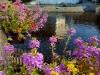 Cesky Krumlov pension Wok vyhled z terasy na  Vltavu